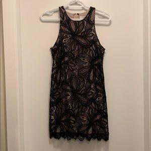 Aritzia Babaton Henry Dress